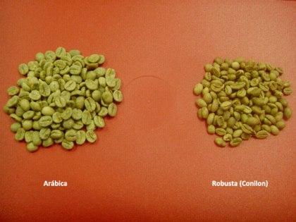 Cafe-Arabica-e-Robusta
