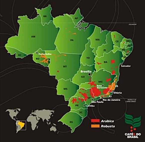 regioes-cafe-brasil